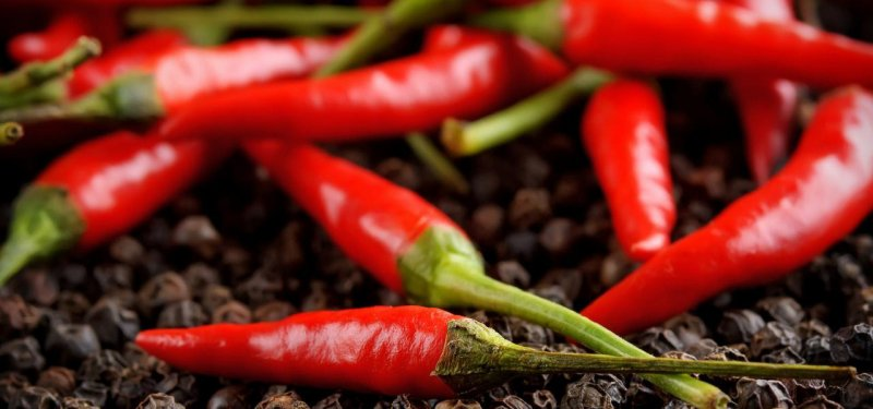 The Hottest Peppers in the World and their Classification. Varieties of Hot Peppers Grown in Moldova