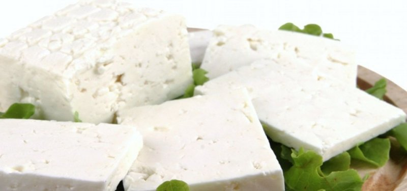 A Sheep Milk Cheese Factory will be Built in Cimislia