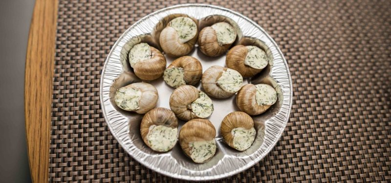 Tasting of Moldovan Snails Paired with White Wines. PHOTO and VIDEO