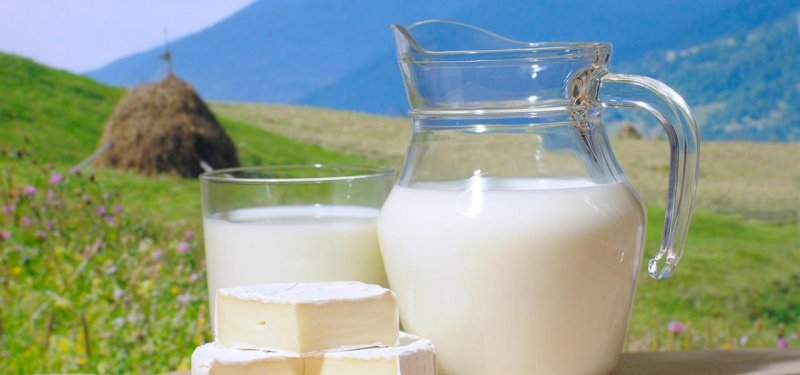 Goat Milk Products: Quality, Composition, Useful Properties