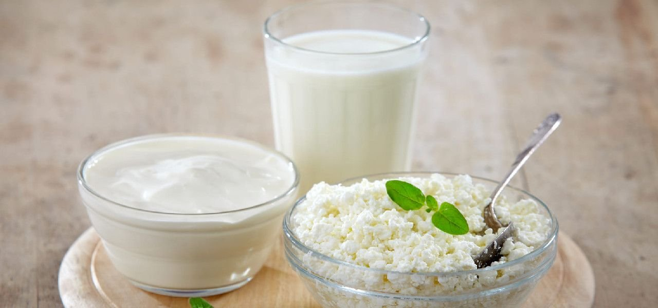 Skimmed Dairy Products and Controversies Associated with their Consumption