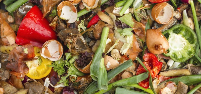 Food Waste. How to Prevent and Reduce it?