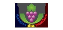 Association of Moldovan Grape Producers and Exporters