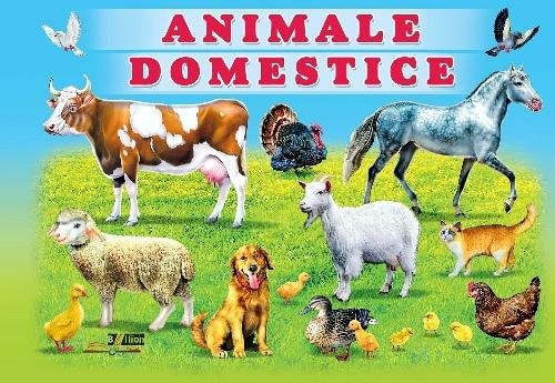 Cardboard book Animale Domestice