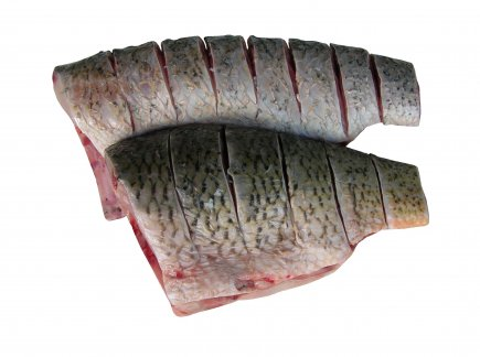 Common carp steak